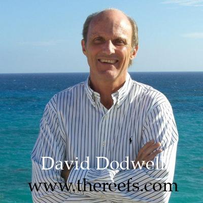 David-Dodwell-1
