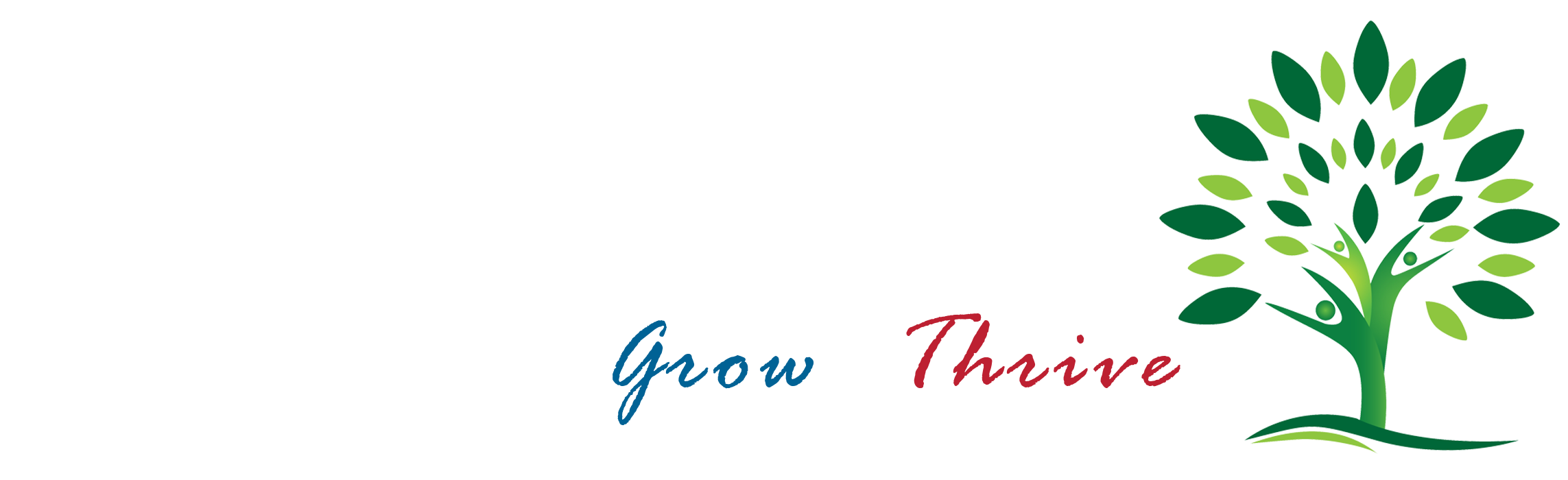Nicolay Kreidler Consulting